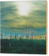 Sunset At Rapp Park Wood Print