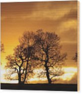 Sunset At Redhill Wood Print