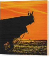 Sunset At The Ss Atlantus Concrete Ship Wood Print