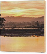 Sunset At Triabunna Tasmania Wood Print