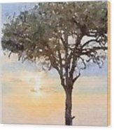 Sunset Behind Acacia Tree Digital Watercolor Wood Print
