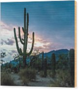 Sunset Beyond The Cacti Wood Print
