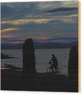Sunset Bicycle At Earth Clock Burlington Vermont Panorama Wood Print