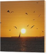 Sunset Birds Key West Wood Print by Susanne Van Hulst
