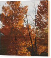Sunset By The School House Wood Print