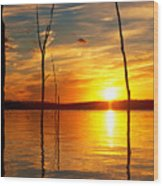 Sunset By The Water Wood Print