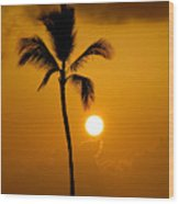 Sunset Coconut Palm Maui Hawaii Wood Print