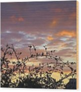 Sunset Colors To The West Wood Print