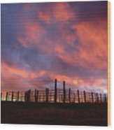 Sunset Corral Wood Print