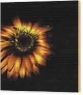 Sunset Flower Wood Print