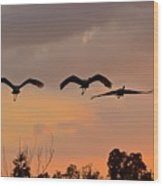 Sunset Fly Over Wood Print