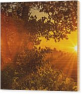 Sunset Fog Over The Pacific #3 Wood Print