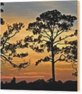 Sunset For One Wood Print