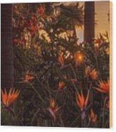 Sunset Garden Wood Print