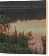Sunset Heron Wood Print