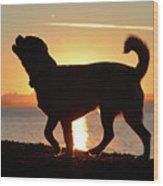 Sunset Howl Wood Print