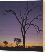 Sunset In Africa Wood Print
