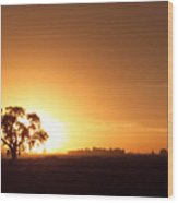 Sunset In Arizona Wood Print