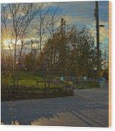 Sunset In Brooklyn  Wood Print