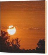 Sunset In Charleston Wood Print