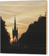 Sunset In Hyde Park Wood Print