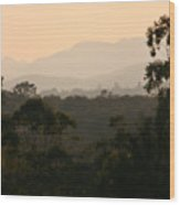 Sunset In Limpopo Wood Print