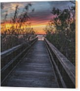 Sunset In Meaher Park #102 Wood Print