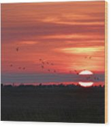 Sunset In Sabine Pass Texas Wood Print