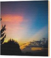 Sunset In Summer  Wood Print