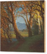 Sunset In The Nebraska Territory Wood Print by Albert Bierstadt