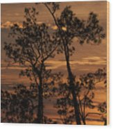 Sunset In The Pine Woods Wood Print