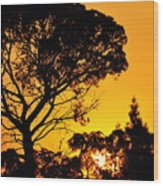 Sunset In Tujunga Wood Print
