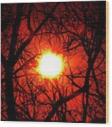 Sunset In Virginia Wood Print
