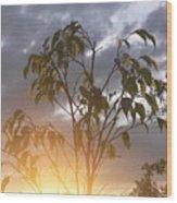 Sunset Leaves 2 Wood Print
