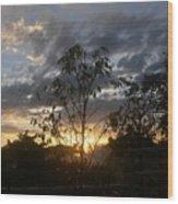 Sunset Leaves 5 Wood Print