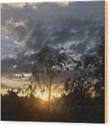 Sunset Leaves 6a Wood Print