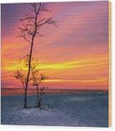Sunset Light Wood Print