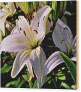 Sunset Lilies Wood Print