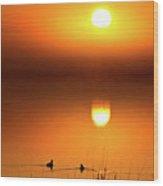 Sunset Marshes Wood Print