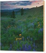 Sunset Meadow Trail Wood Print