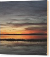 Sunset On Lake Lochloosa Wood Print