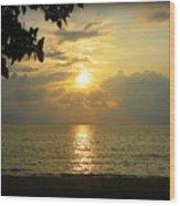 Sunset On Lake Michigan Wood Print by Trina Prenzi