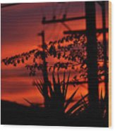 Sunset On Socal Suburb Wood Print