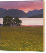 Sunset On The Ardgour Mountains Wood Print