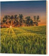 Sunset On The Prairie Wood Print