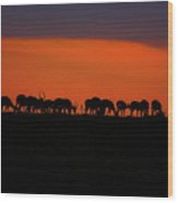 Sunset On The Serengeti Wood Print