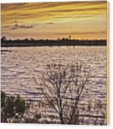 Sunset On The Wetlands Wood Print