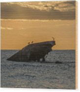 Sunset On The Wreck Of The Concrete Ship Atlantus Wood Print