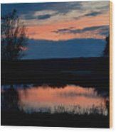 Sunset On Willow Pond Wood Print