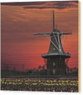 Sunset On Windmill Island Wood Print